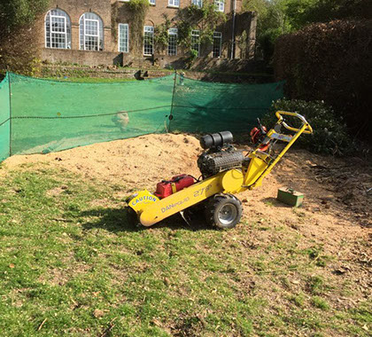 image of a yellow machine having just finished a stump removal job
